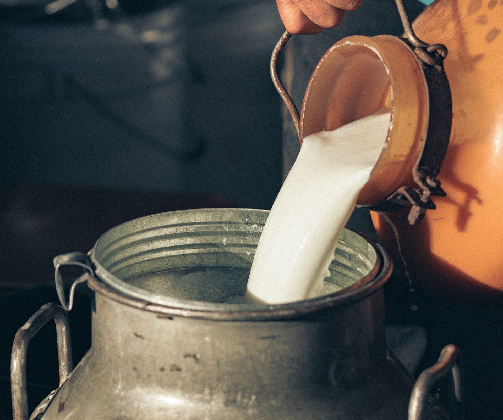 Latte lombardo: i dati sull'andamento della qualità