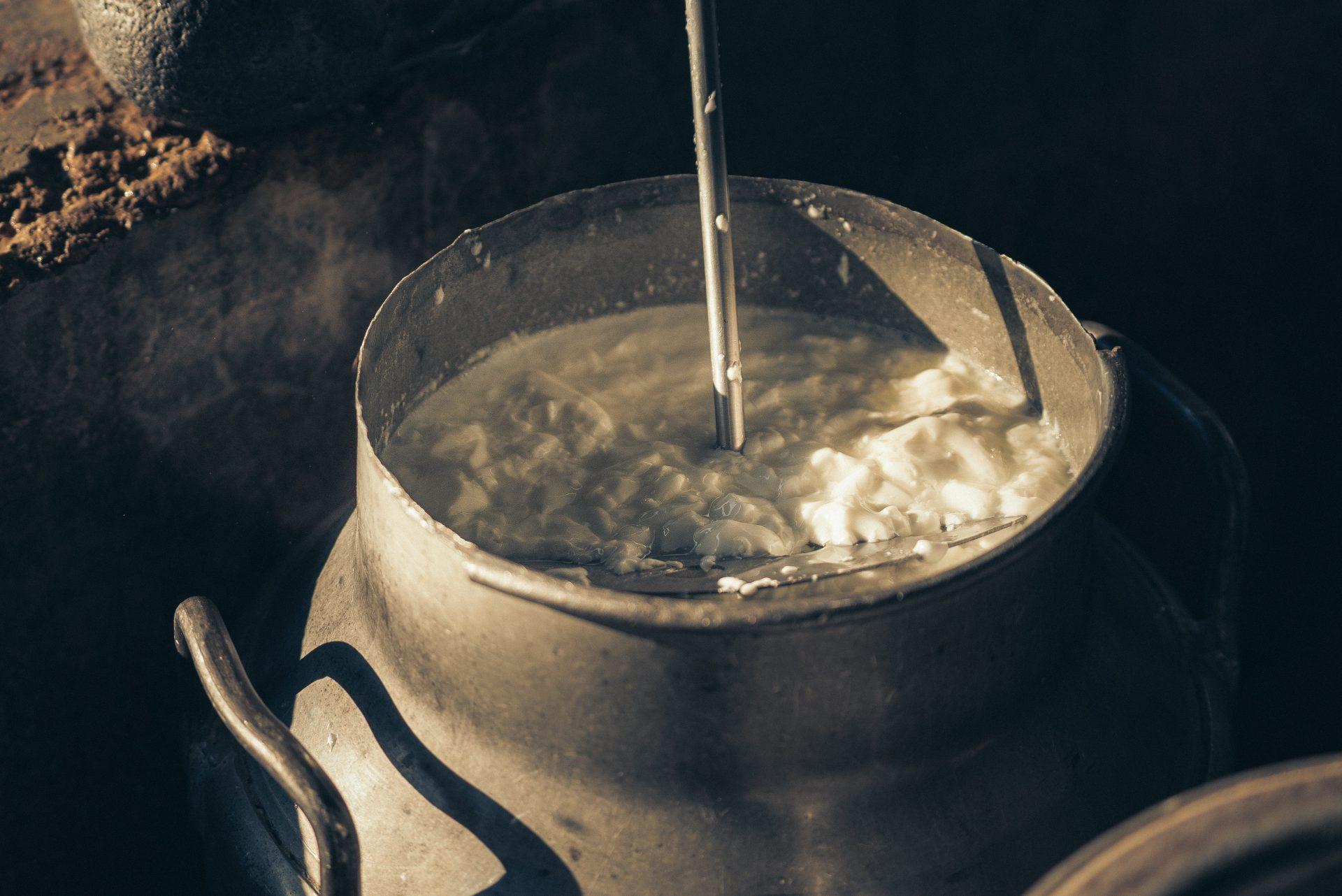 Prezzo del latte, il Presidente Crotti ringrazia il Ministero e l'Assessorato