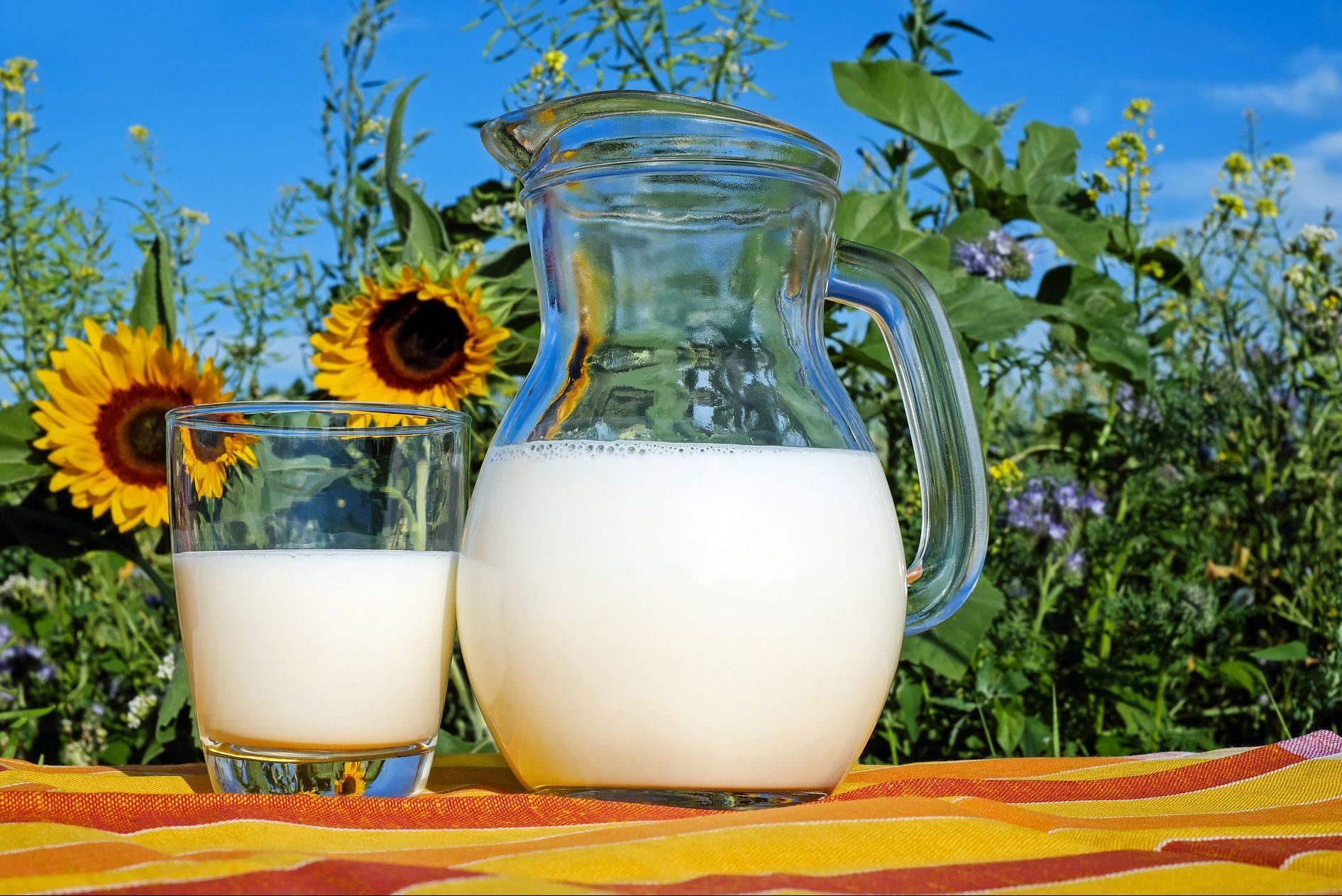 Latte: un buon bicchiere fa bene anche contro le fake news